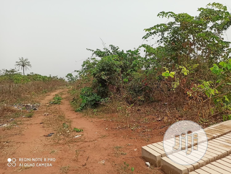 2 Plots of Empty Land for Sale at Orji Owerri Imo State. | Land & Plots For Sale for sale in Owerri, Imo State, Nigeria