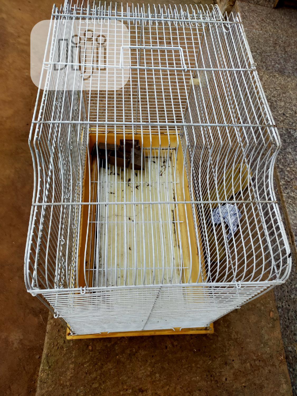 Bird Cages   Pet's Accessories for sale in Ikotun/Igando, Lagos State, Nigeria