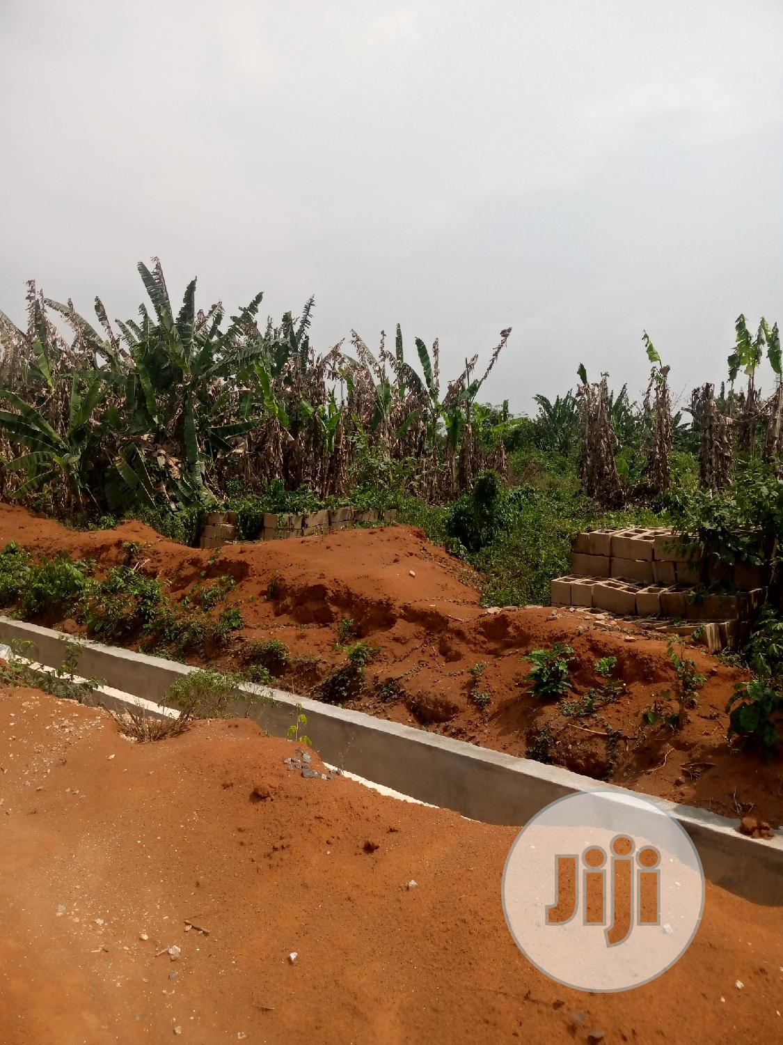 Archive: Half Plot of Land Available for Sale