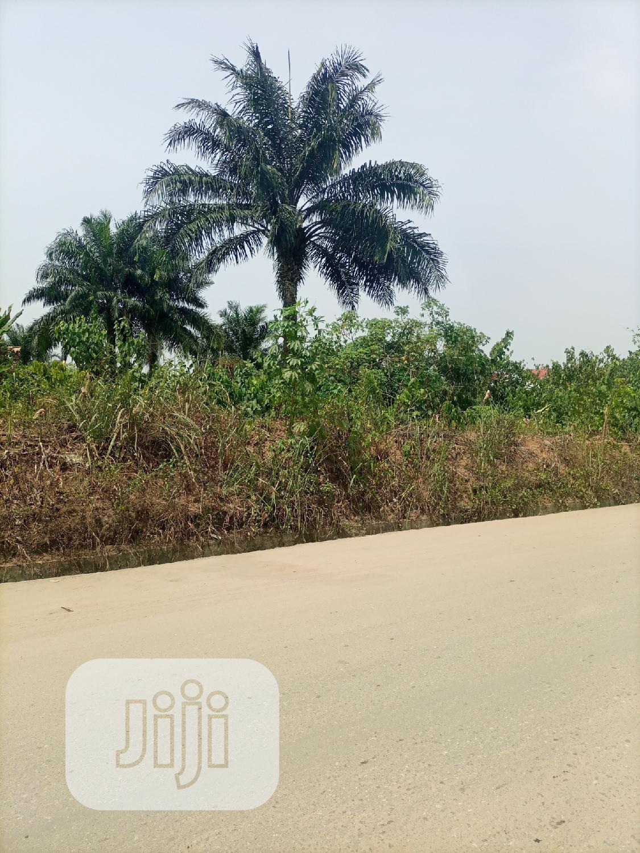 1/2 Plots of Lands at Rumunduru New Layout