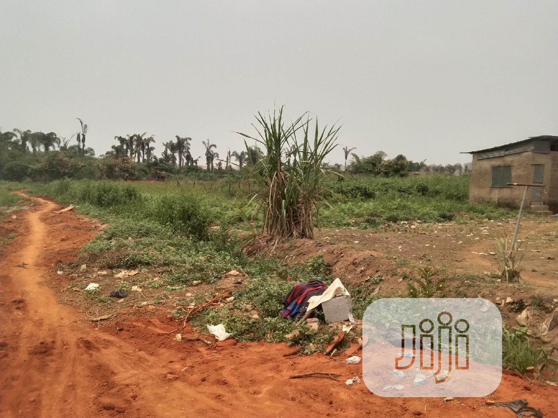 Half Plot of Land in a Decent Area at Ikola Command Ipaja