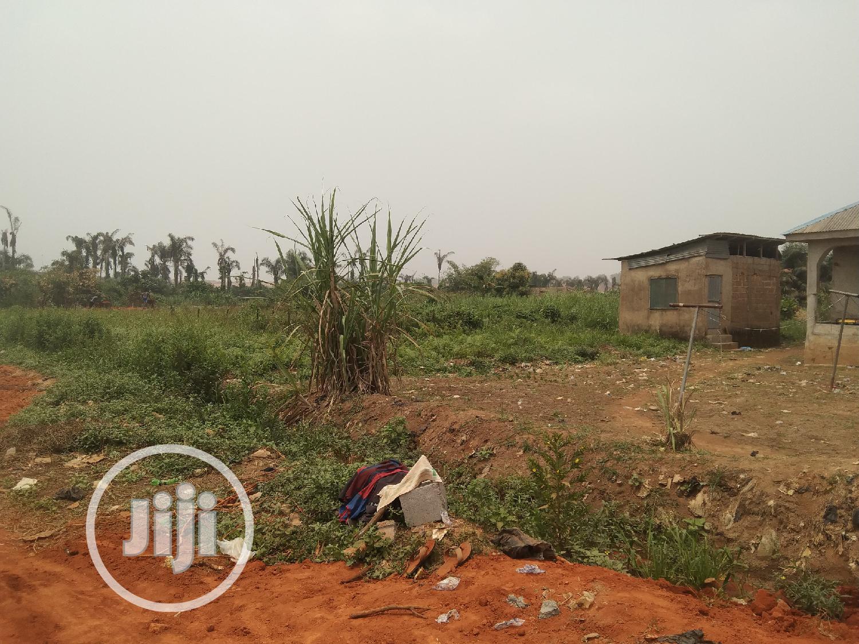 Half Plot of Land in a Decent Area at Ikola Command Ipaja   Land & Plots For Sale for sale in Ipaja / Ipaja, Ipaja, Nigeria
