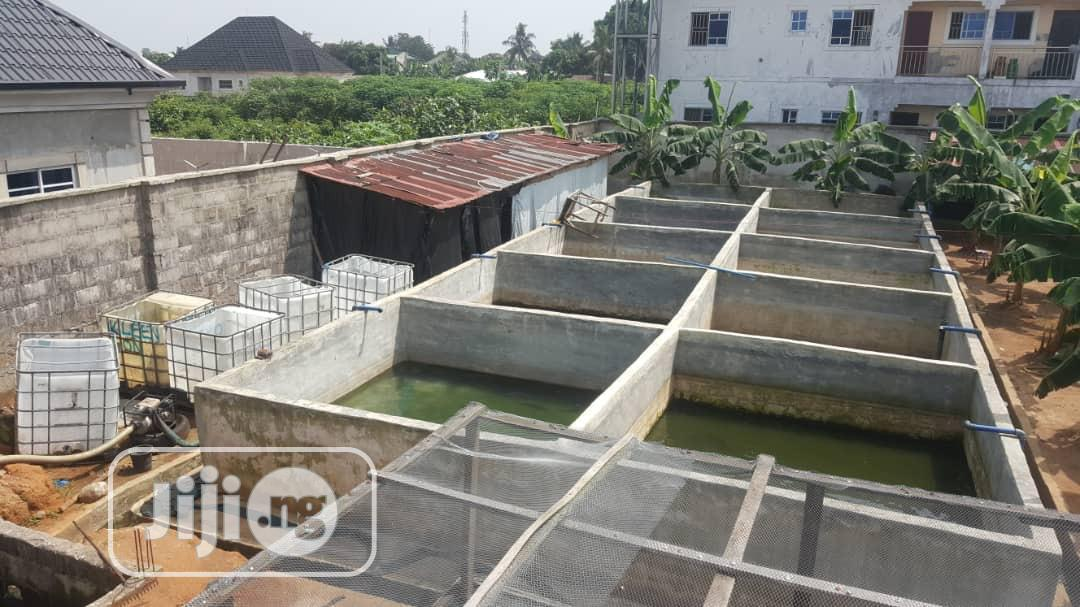Fish Farm for Rent | Commercial Property For Rent for sale in Obio-Akpor, Rivers State, Nigeria