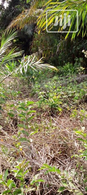 Deed of Assignment and Family Recipe | Land & Plots For Sale for sale in Ogun State, Abeokuta North