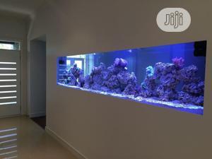 Wall Fish Aquarium | Fish for sale in Lagos State, Surulere