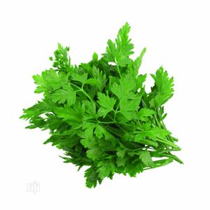 Hybrid Parsley Seeds and Seedling | Feeds, Supplements & Seeds for sale in Lagos State, Ojodu