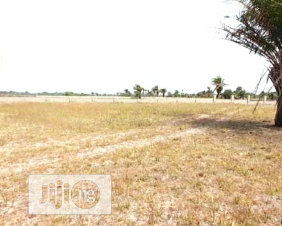 Archive: Affordable Land in a Fenced Estate