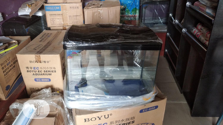 Aquarium Tank   Fish for sale in Surulere, Lagos State, Nigeria