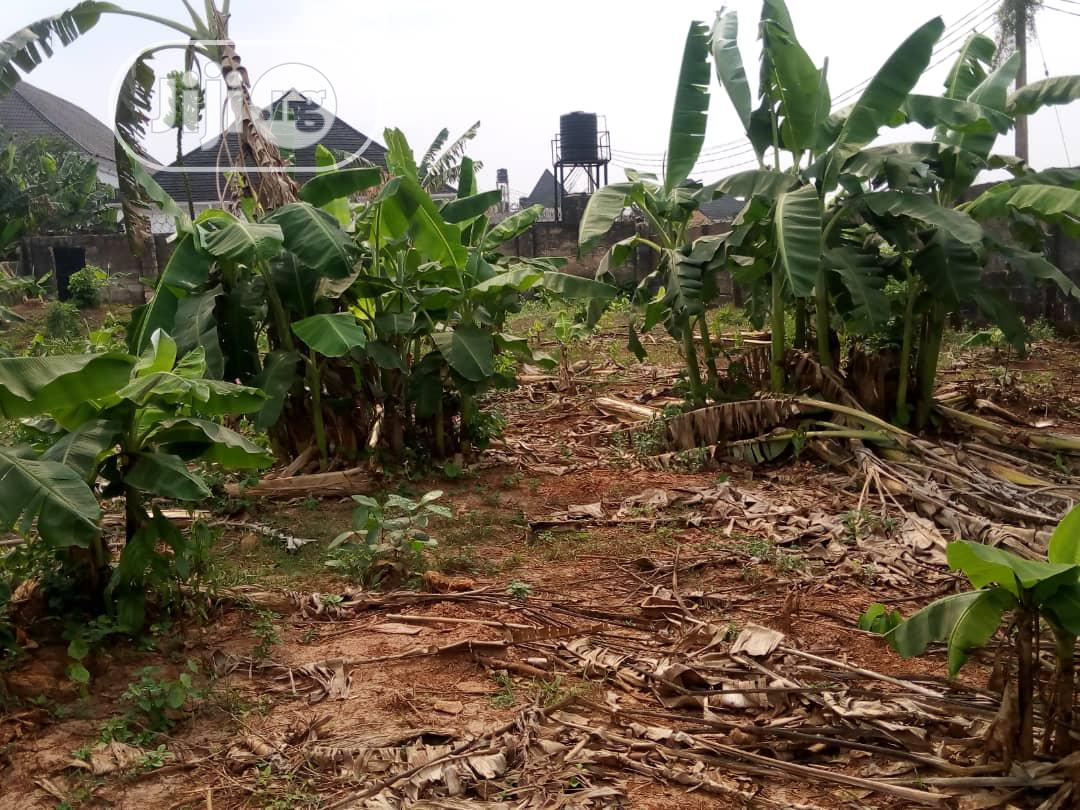 Affordable Land for Sale   Land & Plots For Sale for sale in Benin City, Edo State, Nigeria
