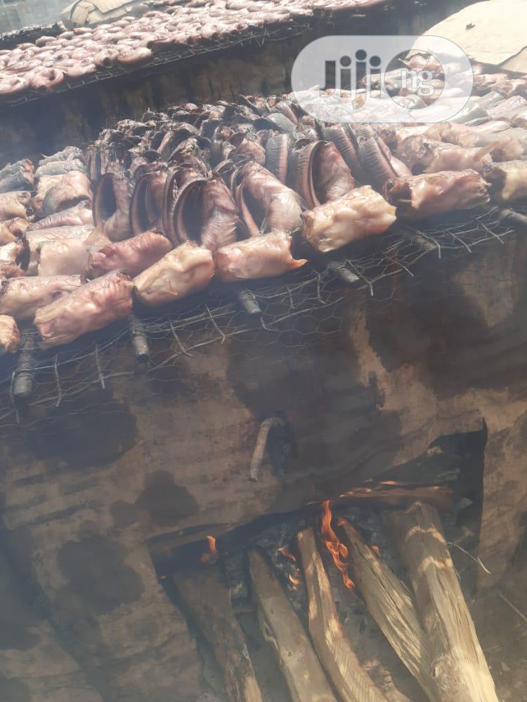 Archive: 3000kg Catfish (Live) Per Kg for Abuja Environs