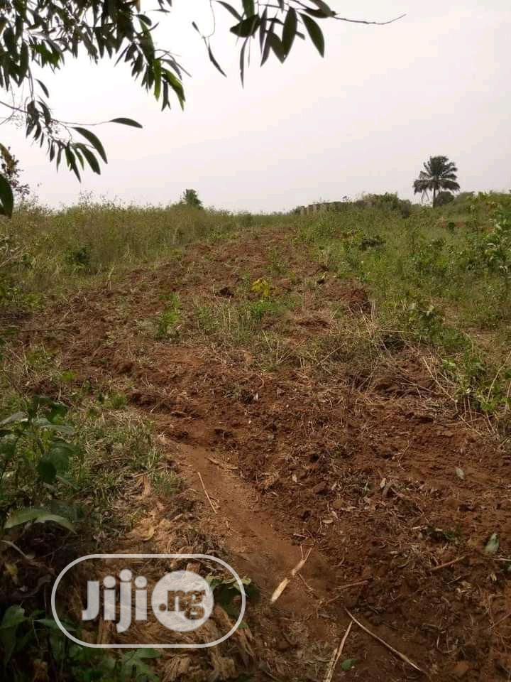Land Acres of Sale | Land & Plots for Rent for sale in Ado-Odo/Ota, Ogun State, Nigeria