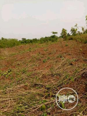 Land Acres of Sale | Land & Plots for Rent for sale in Ogun State, Ado-Odo/Ota