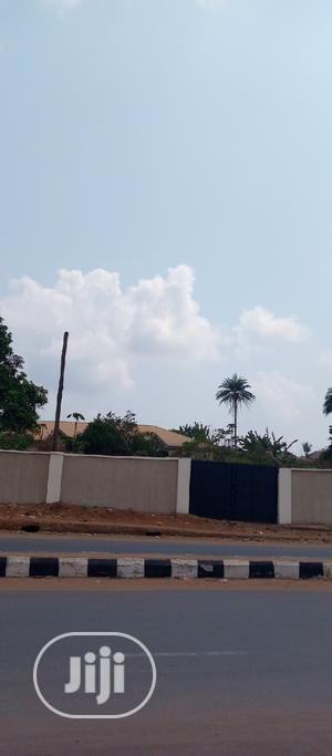 Commercial Land for Sale at Okpanam Asaba Road.   Land & Plots For Sale for sale in Delta State, Oshimili North