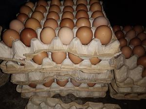 Farm Fresh Eggs Depot for Wholesale N Retail.   Meals & Drinks for sale in Ondo State, Akure