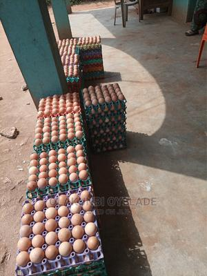 Eggs That Makes You Smile   Meals & Drinks for sale in Lagos State, Ikorodu
