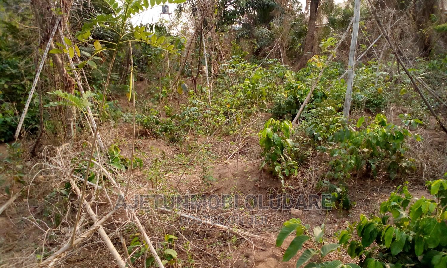 Land With Uncompleted Building for Sale | Land & Plots For Sale for sale in Ado Ekiti, Ekiti State, Nigeria