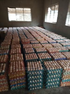 Eggs for Sale   Meals & Drinks for sale in Lagos State, Yaba