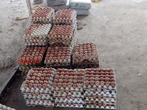 Buy Fresh Eggs   Meals & Drinks for sale in Abuja (FCT) State, Kubwa