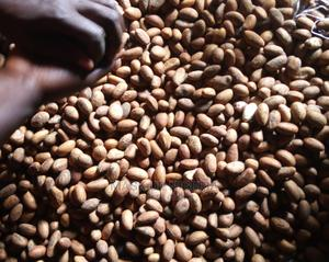 Fresh Quantity Bitter Kola (100 Pieces) | Feeds, Supplements & Seeds for sale in Osun State, Osogbo