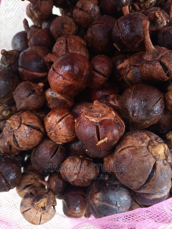 Fresh and Juicy Gorontula Wholesales (500 Pieces)
