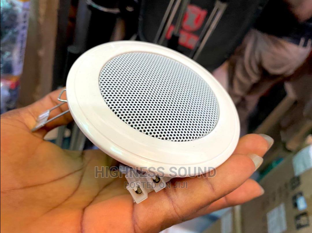 Mini in Ceiling Speaker