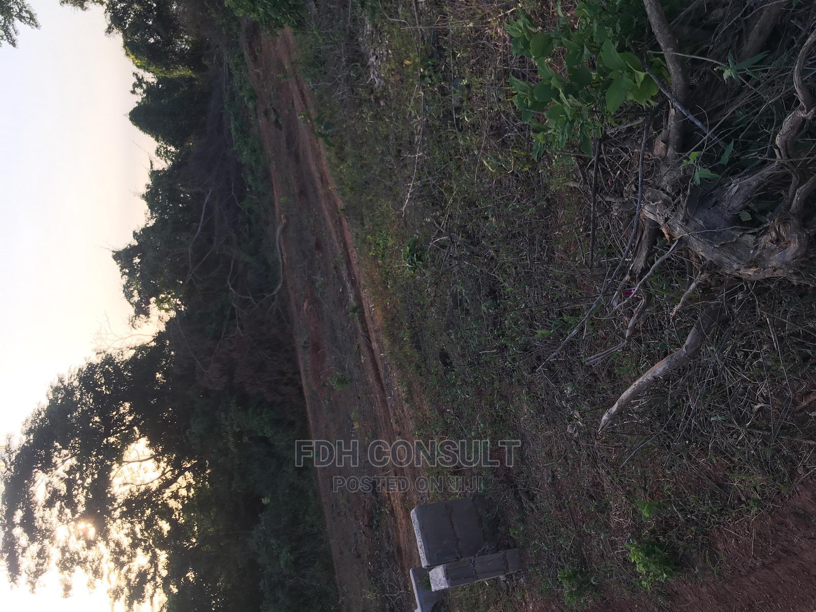 Archive: Residential Plots at Oloosa, Ojo-Ekun Road, Off New-Garage