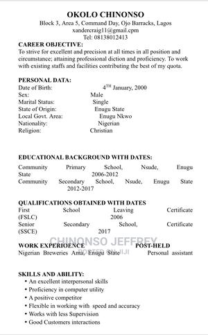 Clerical Administrative CV | Clerical & Administrative CVs for sale in Lagos State, Victoria Island