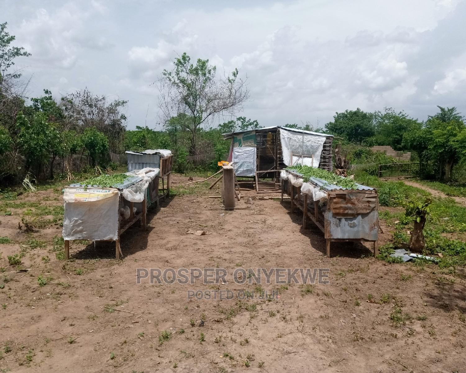 Archive: A Plot of Land With Small House for Sale