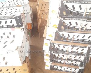 Day Old Chicks of All Kind. | Livestock & Poultry for sale in Oyo State, Ibadan