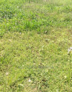 500sqm Land With a 4bedroom Bungalow for Sale at Ketu   Land & Plots For Sale for sale in Lagos State, Kosofe
