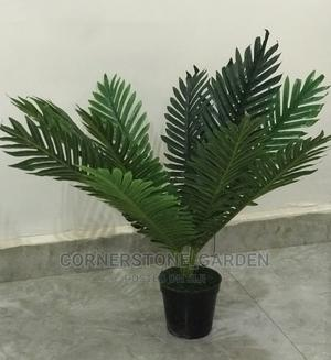 Artificial Palm Plant   Garden for sale in Abuja (FCT) State, Lokogoma
