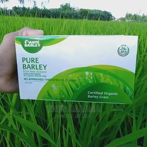 Sante Barley Pure for CANCER/ DIABETES/ ARTHRITIS | Vitamins & Supplements for sale in Lagos State, Ikeja