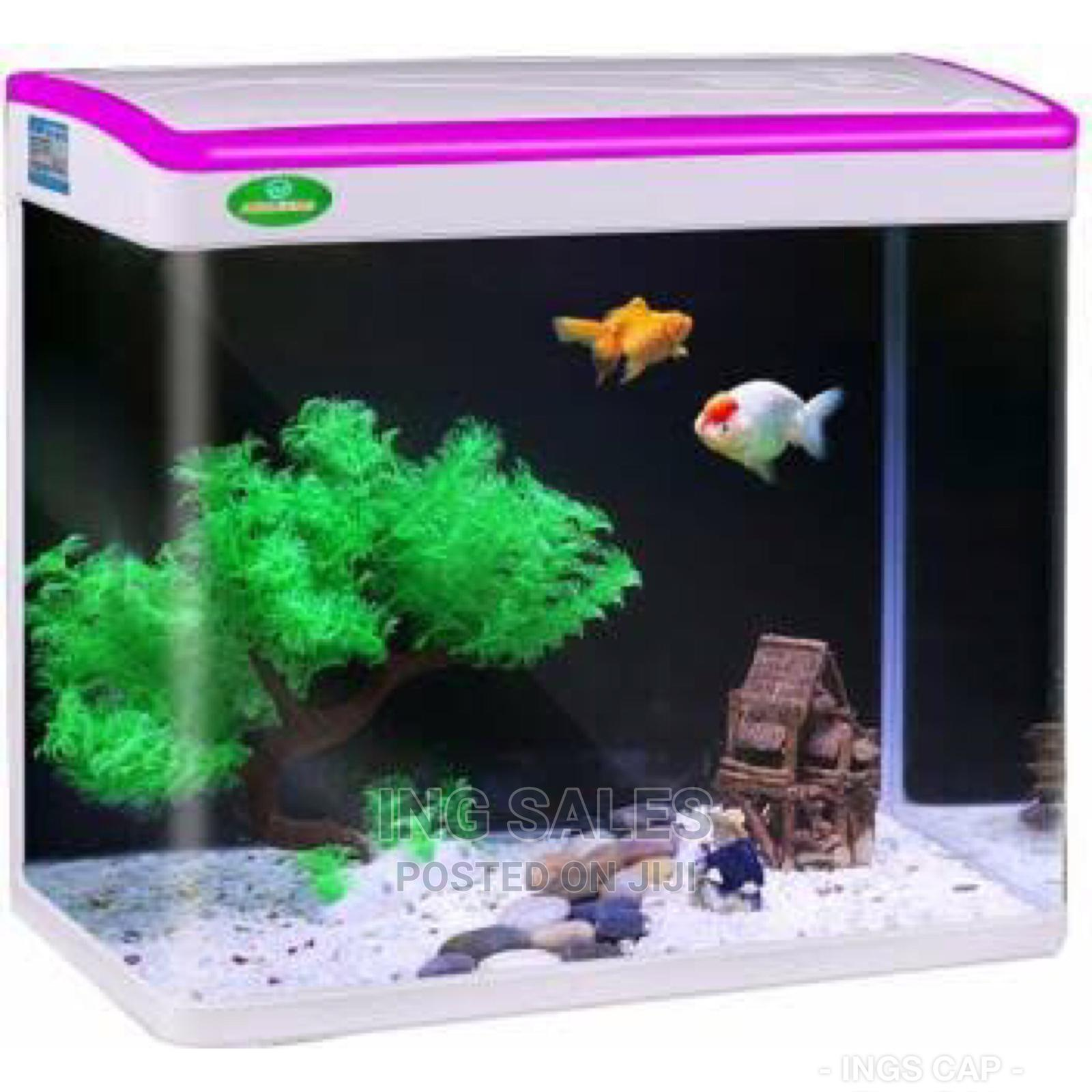 Factory Made Aquarium With Light And Filter