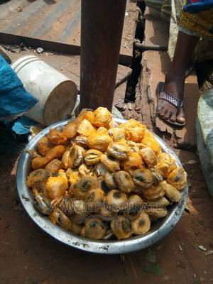 Jumbo Size of Ugu Seeds(Per Custard Paint) | Feeds, Supplements & Seeds for sale in Anambra State, Onitsha