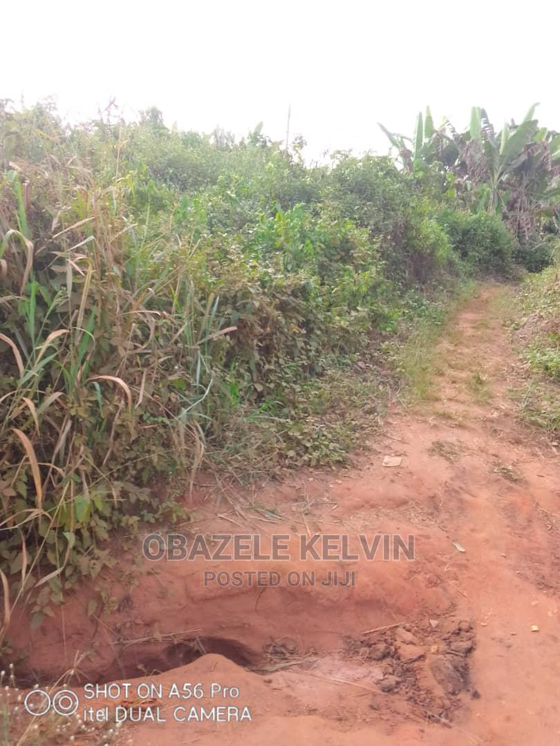 Archive: Farmland Estate, Located at Laloko Village, Owode Egba Ogun