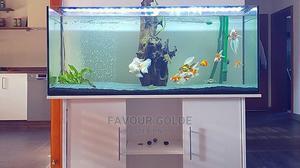 Stand Aquarium   Fish for sale in Lagos State, Surulere