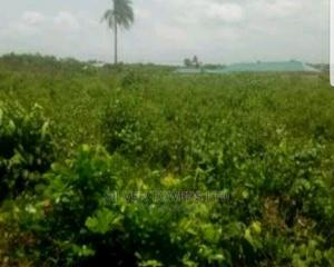 Mixed Use Land for Sale   Land & Plots For Sale for sale in Ojodu, Isheri North