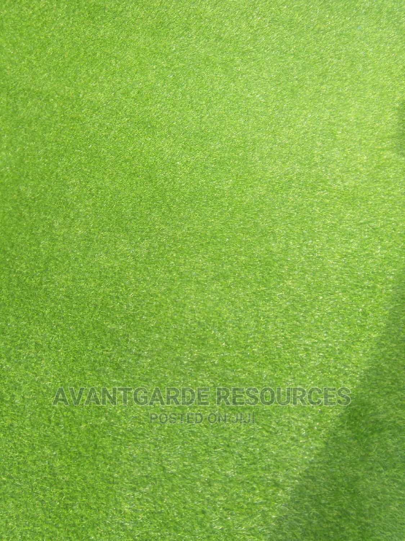 Green Grass Carpets at Egbeda