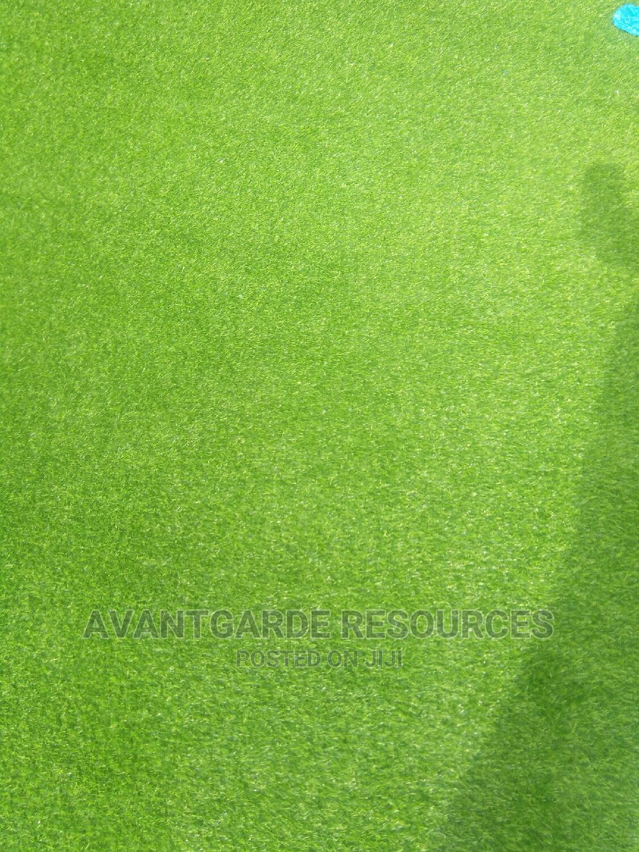 Green Grass Carpets At Ibadan