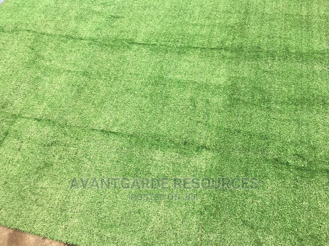 Green Grass Carpets At Epe
