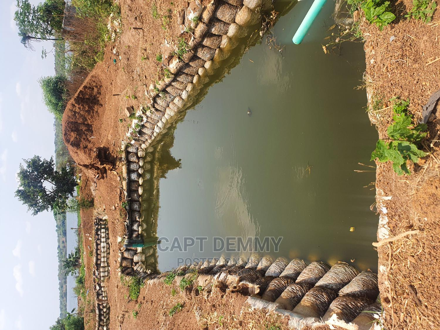 Fish Pond for Rent | Farm Machinery & Equipment for sale in Ilorin West, Kwara State, Nigeria