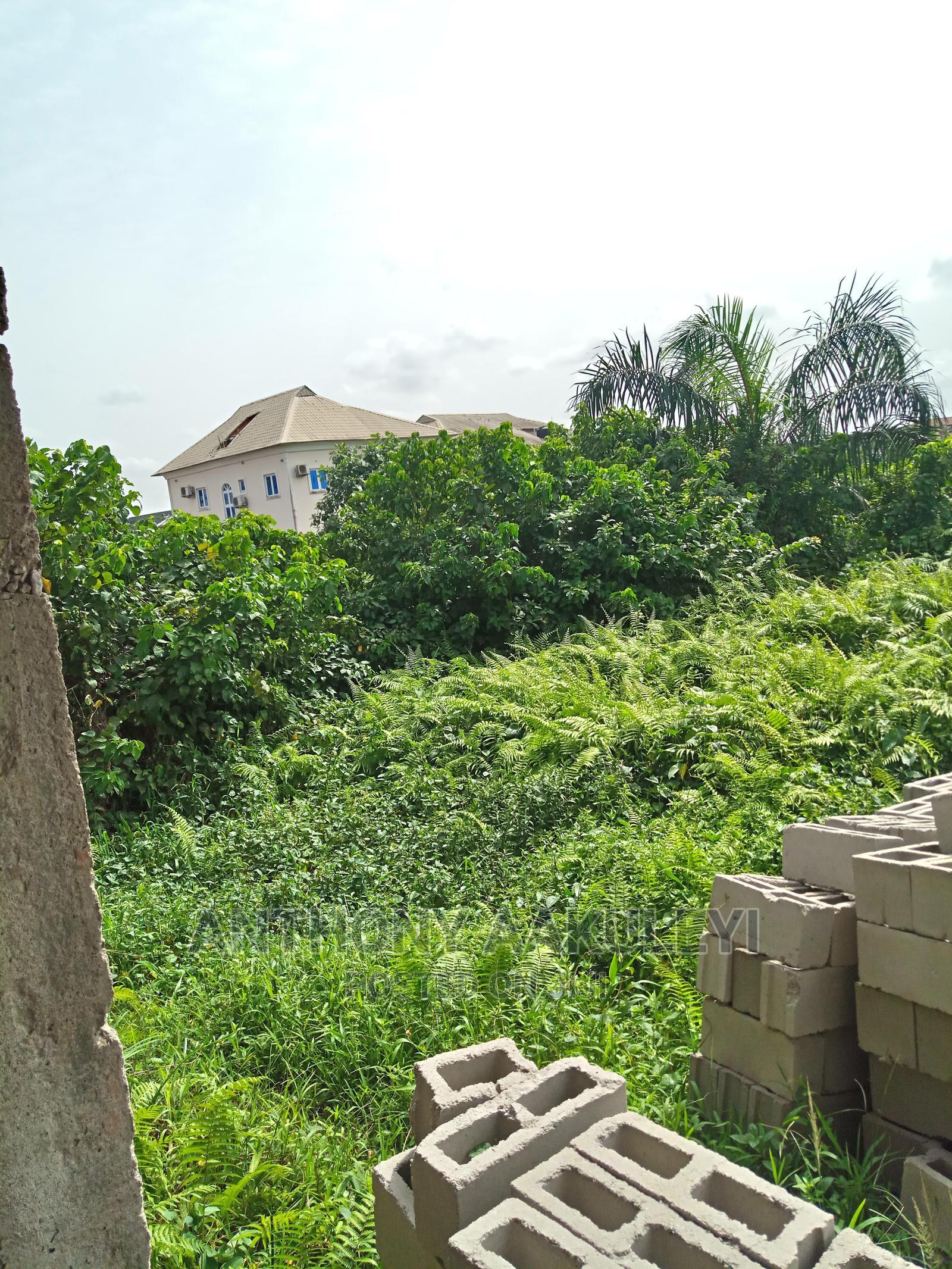 Half Plot of Land for Sale   Land & Plots For Sale for sale in Ijegun, Ikotun/Igando, Nigeria
