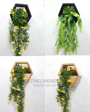 Nigeria Wall Creeping Plant | Garden for sale in Lagos State, Ikeja