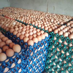 Fresh Eggs Available   Meals & Drinks for sale in Lagos State, Abule Egba