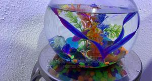 Aquarium Mini Glass Bowl   Fish for sale in Ogun State, Abeokuta North