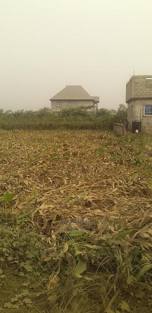 Plots Of Land For At Promise Land Estate,Isheri Oshun | Land & Plots For Sale for sale in Lagos State, Alimosho