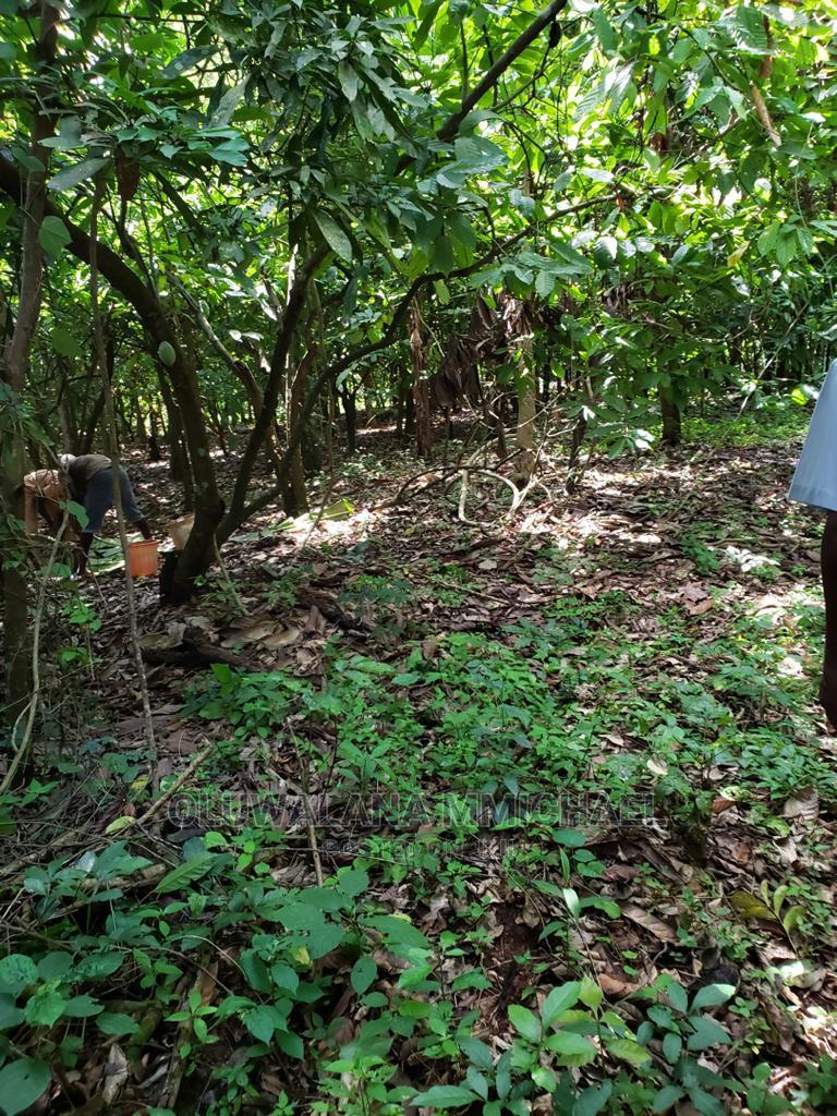 2 And Half Plot Of Land In Ologuneru Ibadan