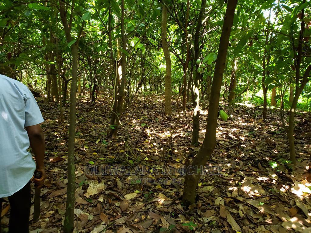 2 And Half Plot Of Land In Ologuneru Ibadan | Land & Plots For Sale for sale in Ologuneru, Ibadan, Nigeria