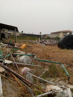 Gazette/ Survey   Land & Plots For Sale for sale in Ajah, Ado / Ajah