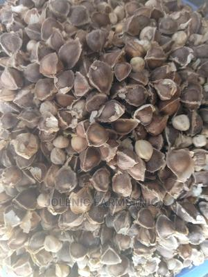 Moringa Seeds Kg | Feeds, Supplements & Seeds for sale in Abuja (FCT) State, Kubwa